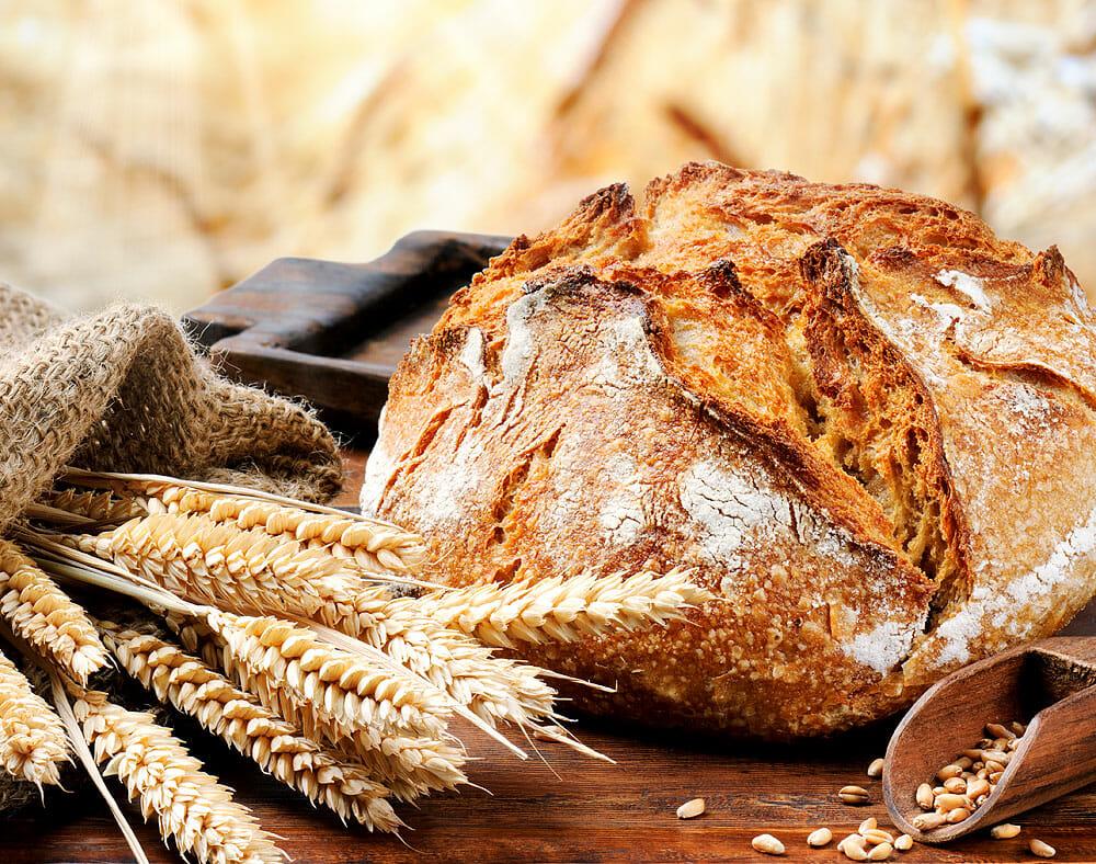 Brot, Schweiß und Tränen