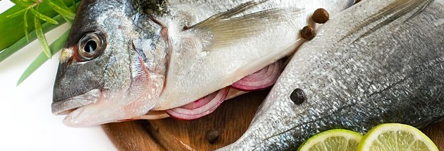 Fisch aus Österreich
