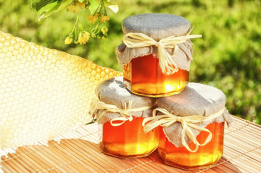 Lebenselexier Honig