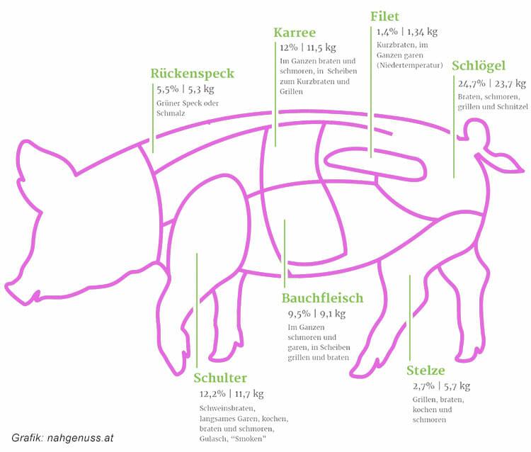 Lieferbare Teile des Schweins